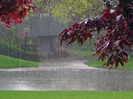 هفته خنک و بارانی در انتظار گیلان