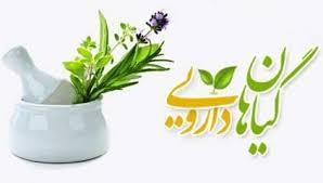 باغ گیاهان دارویی در گیلان افتتاح می شود