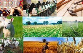 ۵۰۰ میلیارد تومان تسهیلات اشتغال روستایی در گیلان پرداخت شد