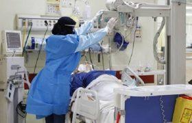 جولان کرونا در گیلان ادامه دارد/بستری ۲۵۰ بیمار جدید کرونایی