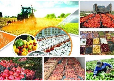کشاورزی استان گیلان ظرفیتی عظیم برای اشتغالزایی و ارزآوری